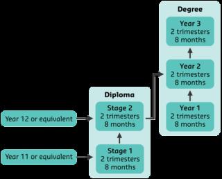 Diploma pathway